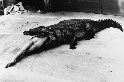 helmut_newton_alligator_still.jpg
